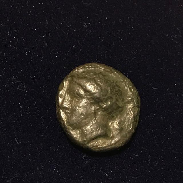 Identification grecque # 6 Img_1819