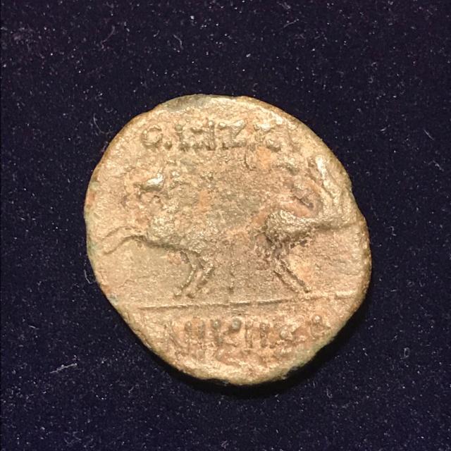 Identification grecque #1 Img_e112