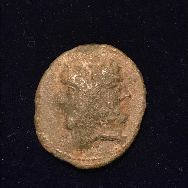 Identification grecque #1 Img_e113