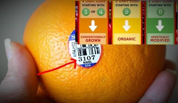 Etiquetage sur les Fruits… Fruits10