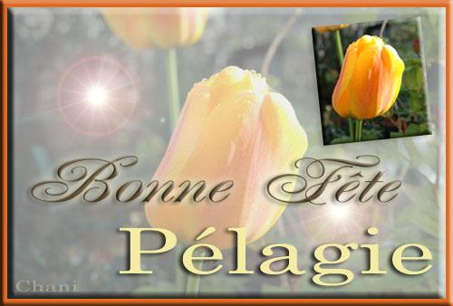 fête  à  souhaiter   - Page 37 Tulipe11