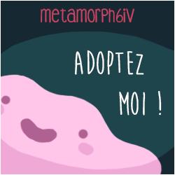 Don de Métamorph6IV Pave2510