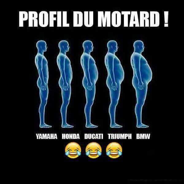 HUMOUR - Motard !!!... Motard10