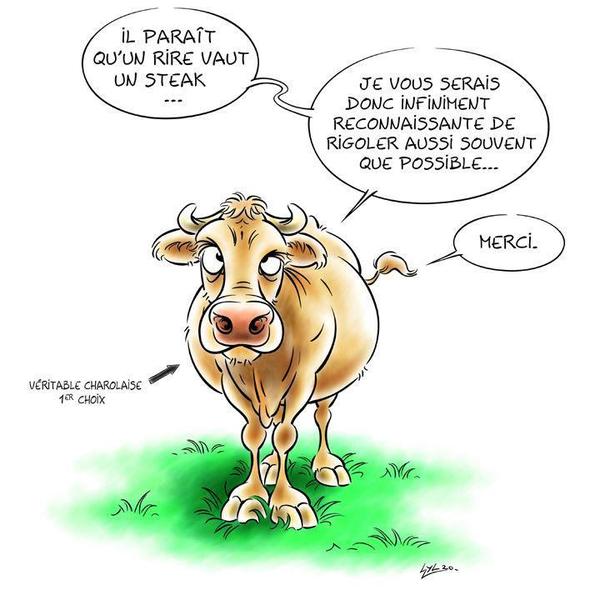 HUMOUR - Savoir écouter et comprendre... Vache10