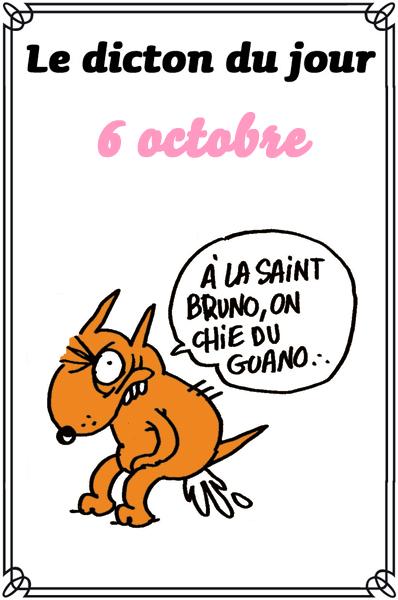 dicton du jour / dicton humour - Page 5 0-a-di11