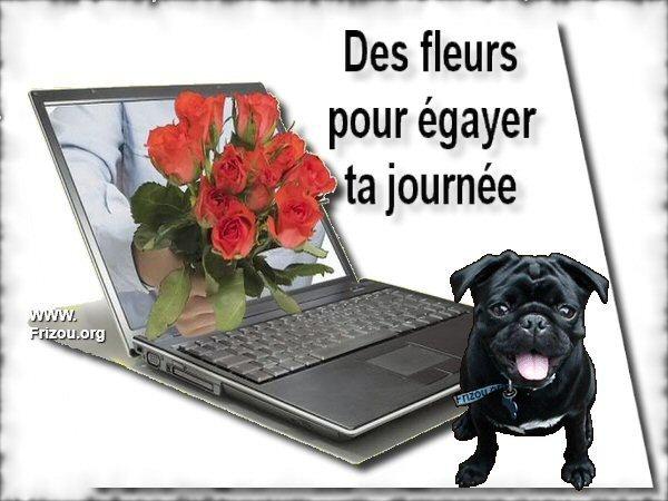 citation du jour / celebre / et images - Page 6 Des_fl10