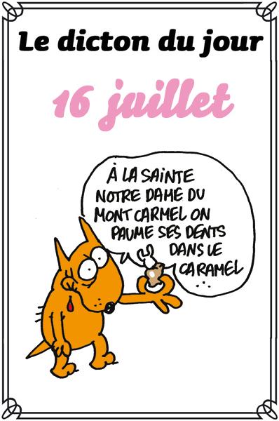 dicton du jour / dicton humour - Page 2 Dicton28