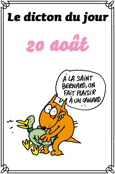 dicton du jour / dicton humour - Page 3 Dicton48