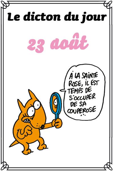 dicton du jour / dicton humour - Page 4 Dicton50