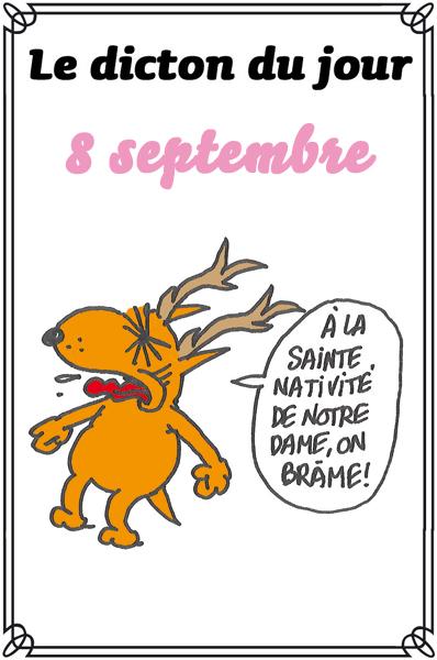 dicton du jour / dicton humour - Page 4 Dicton54