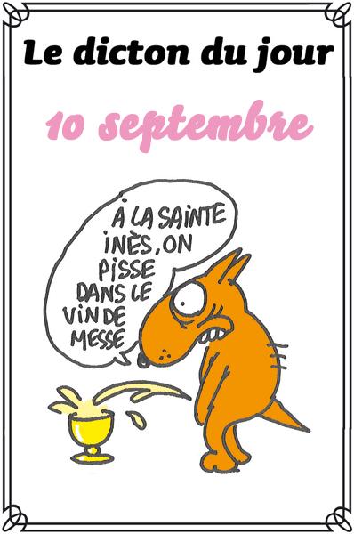 dicton du jour / dicton humour - Page 4 Dicton56