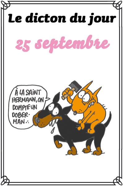dicton du jour / dicton humour - Page 5 Dicton64