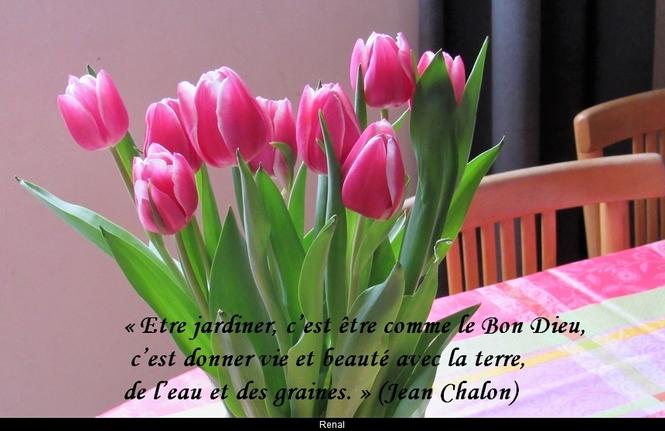 citation du jour/celebres et images de colette - Page 8 Etre_j10