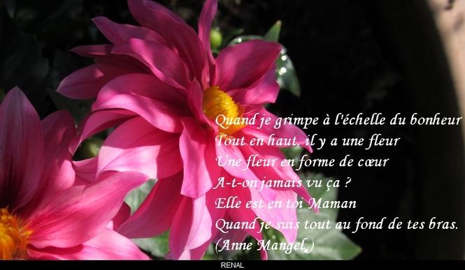 citation du jour/celebres et images de colette - Page 8 L_eche10