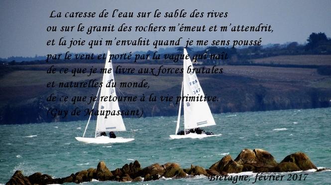 citation du jour/celebres et images de colette - Page 9 La_car10