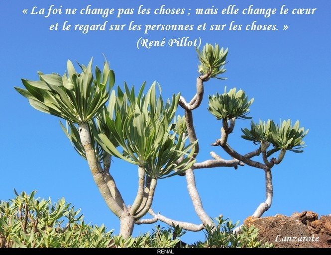 citation du jour / celebre / et images - Page 4 La_foi10