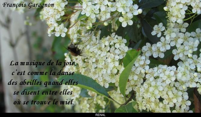 citation du jour / celebre / et images - Page 2 La_mus10