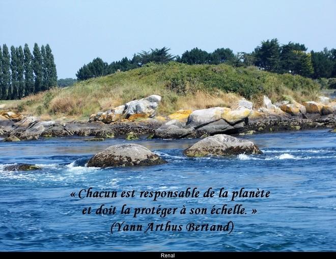 citation du jour / celebre / et images - Page 5 La_pla10