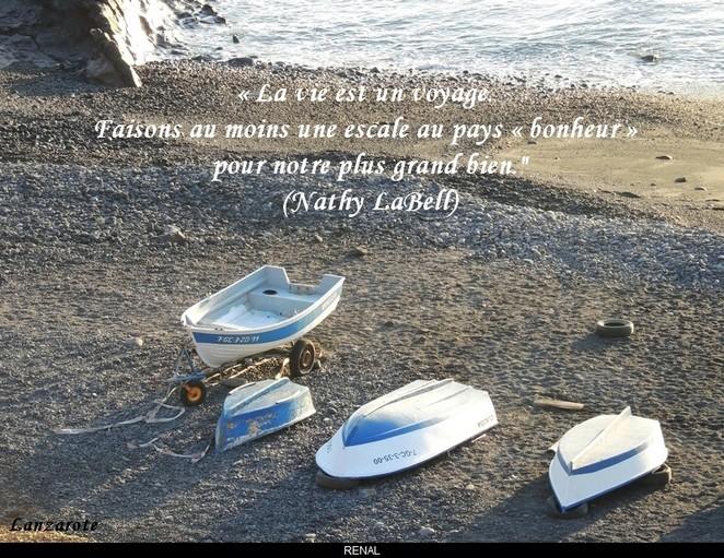 citation du jour/celebres et images de colette - Page 8 La_vie12