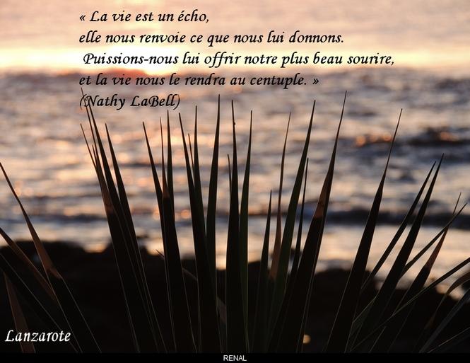 citation du jour/celebres et images de colette - Page 9 La_vie14