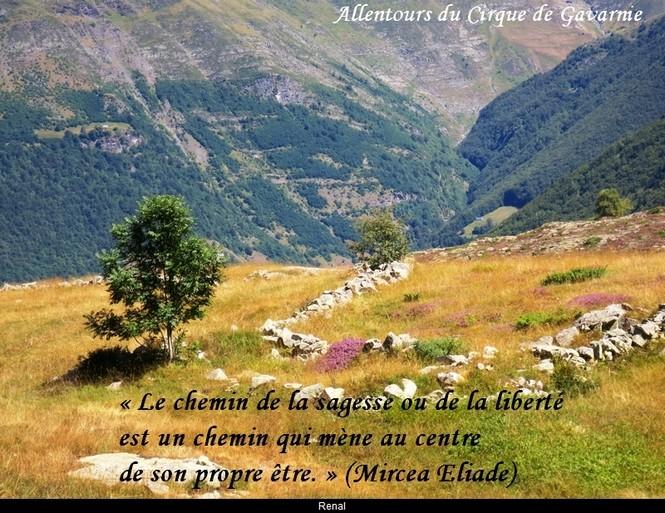 citation du jour/celebres et images de colette - Page 9 Le_che10