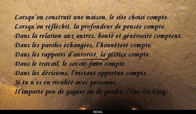 citation du jour / celebre / et images - Page 4 Tout_c11