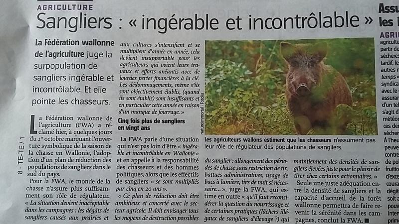 Belgique : Agriculture wallonne VS Gestion sanglier  20170910