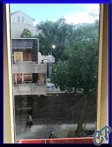 Bort BSS 36-Li Akku Fensterreiniger Fenstersauger Drecki10