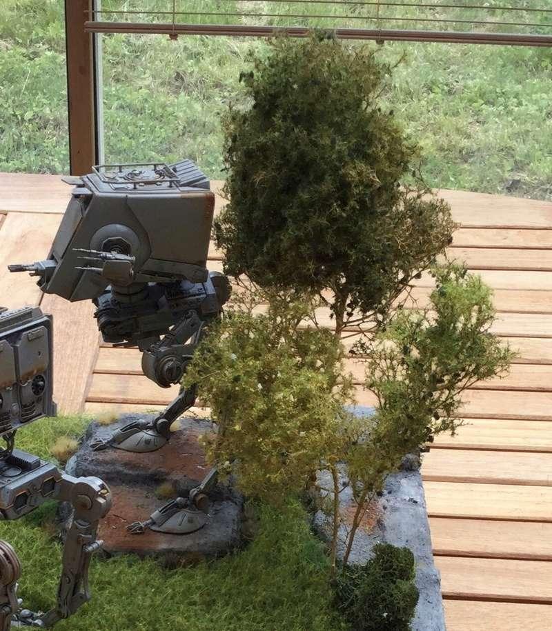 Des arbustes et arbres naturels... Img_3510