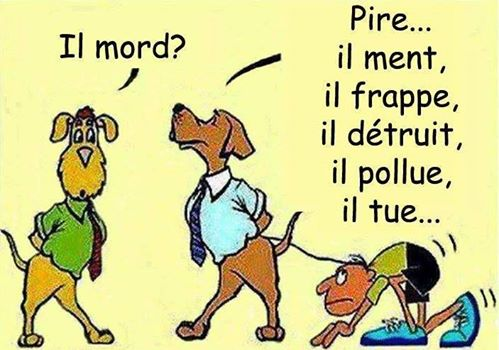 HUMOUR - Page 38 11160610