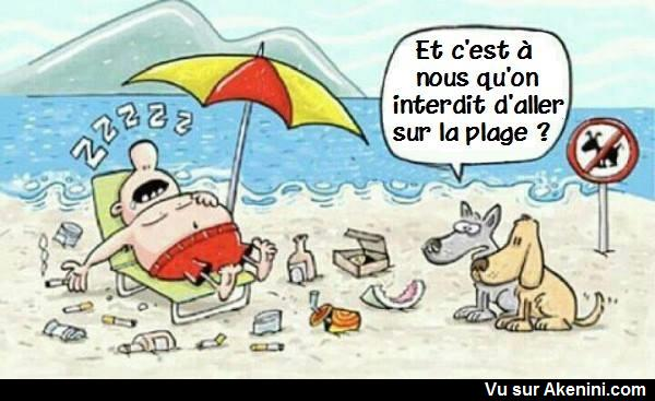 HUMOUR - Page 39 18510