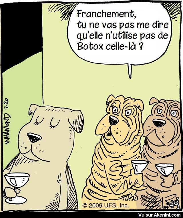 HUMOUR - Page 2 19710