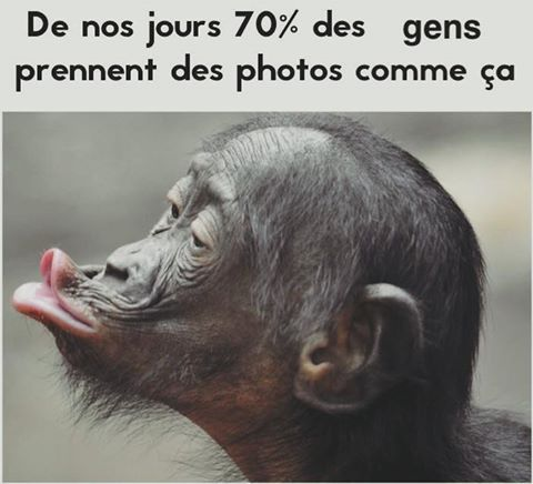 HUMOUR - Page 6 8df68810