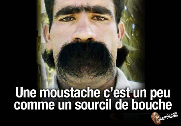 HUMOUR - Page 39 Mousta10