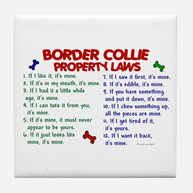 Règles de vie d'un BC Border10