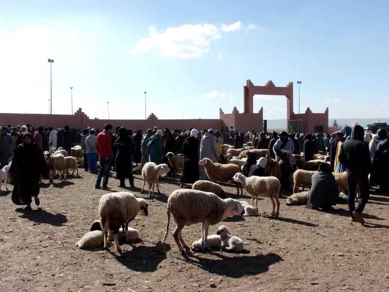 [Maroc/Commerces]  Souks et Marchés  Rimg0210