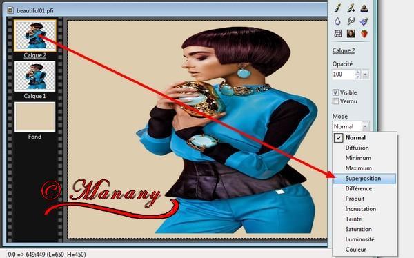 N° 4 Manany Tutorial Beautiful 210