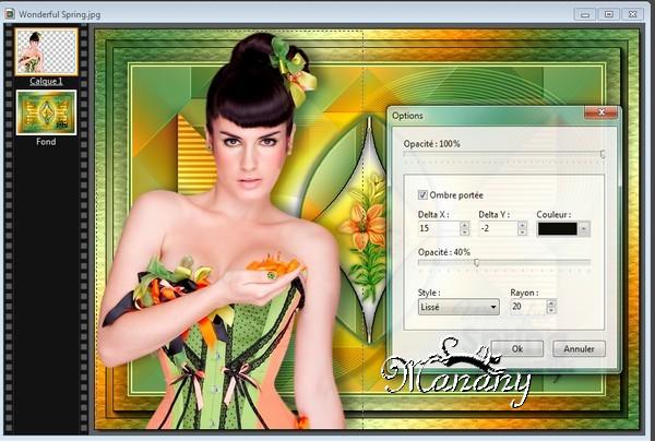 N° 3 Manany Tutorial Wonderful Spring 2510
