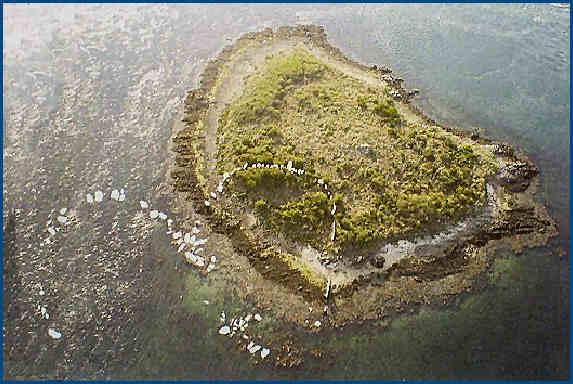[Archéologie] Les mégalithes du Morbihan Er_lan10