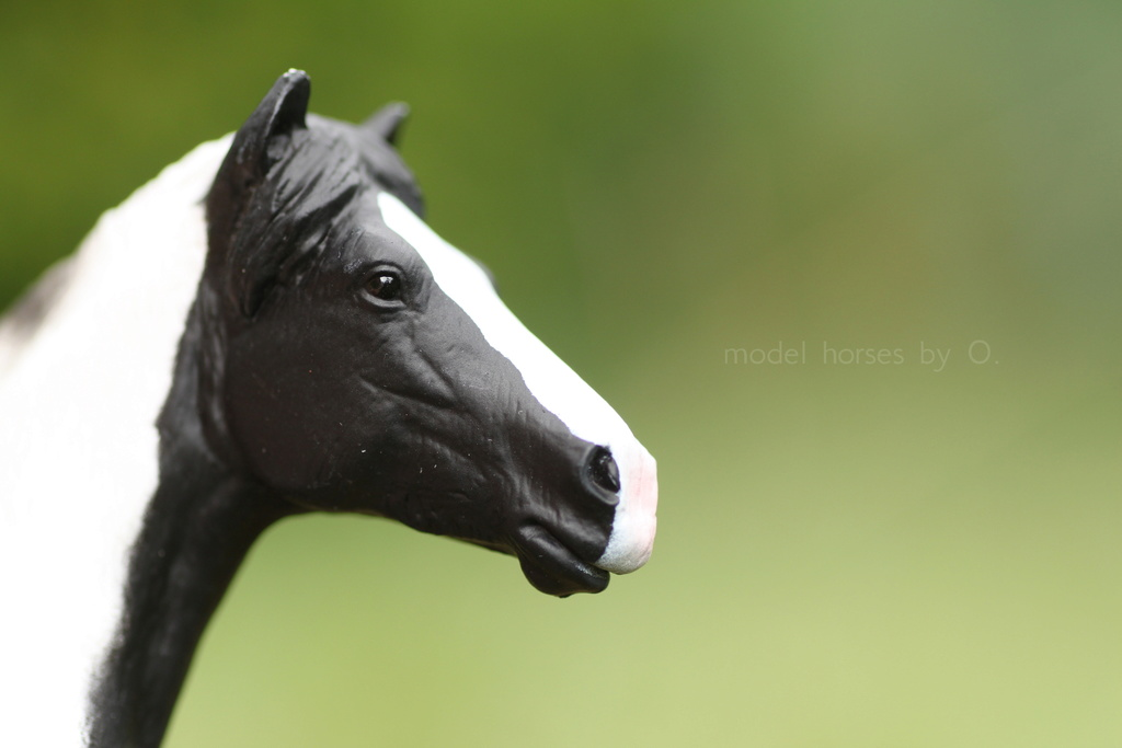 Arabian mare in foal (repainted) and other horses by Anna Mojo_f12