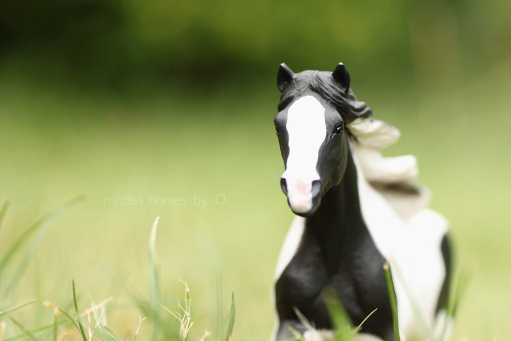 Arabian mare in foal (repainted) and other horses by Anna Mojo_t10