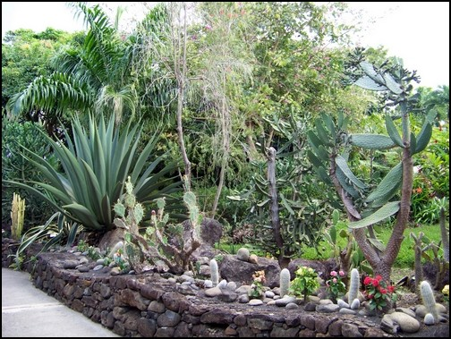 Jardin botanique de Deshaies 121_le11