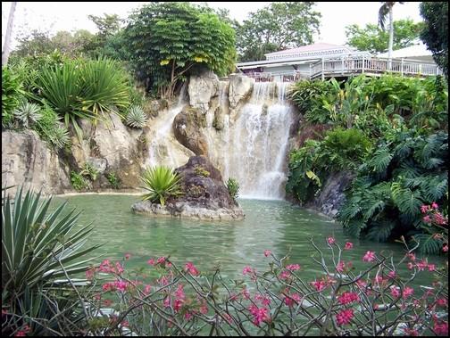Jardin botanique de Deshaies 73_cas10
