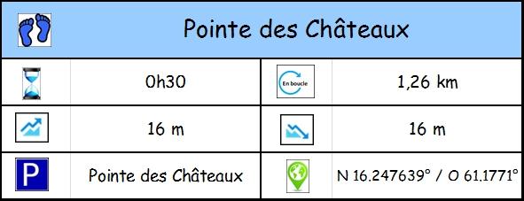 Pointe des Châteaux Profil11