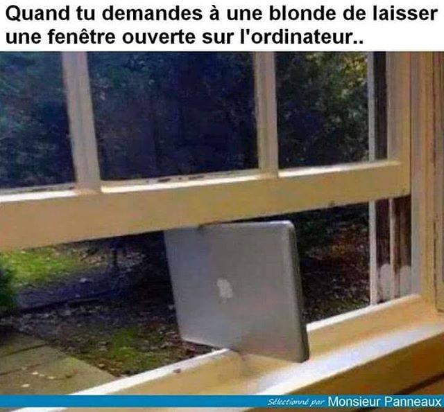 HUMOUR : Histoires de blondes  - Page 38 20768110