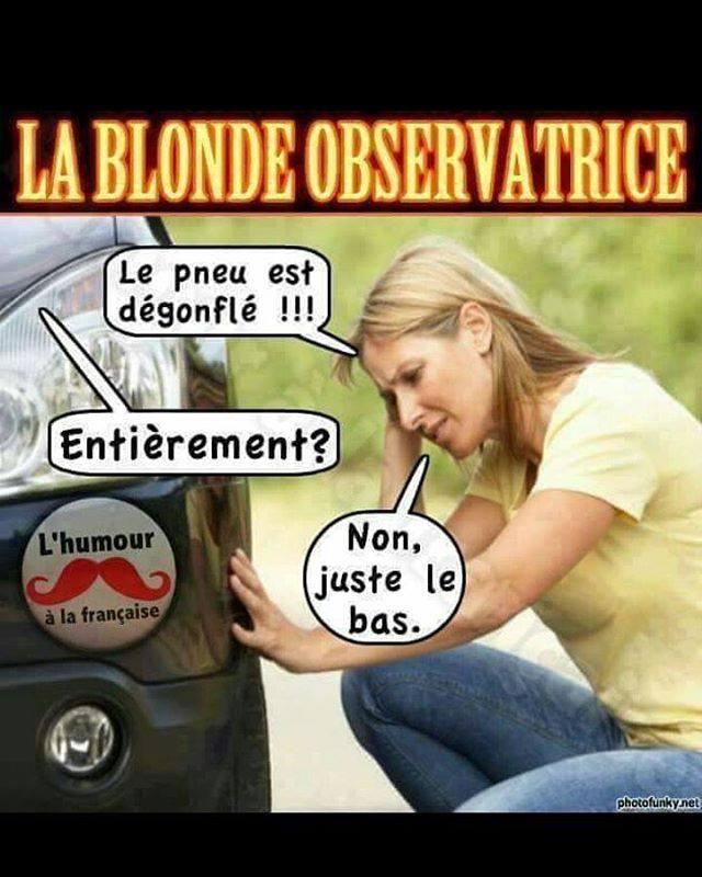 HUMOUR : Histoires de blondes  - Page 38 21077511