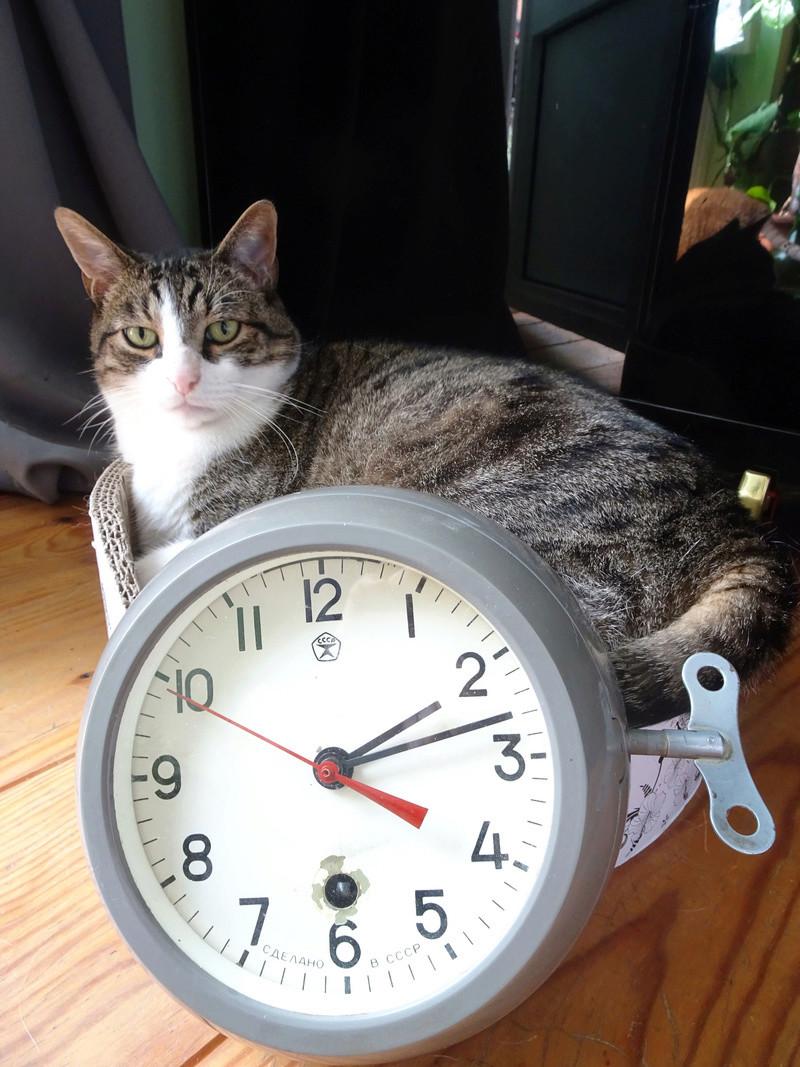 Horloge de marine Vostok Rock10