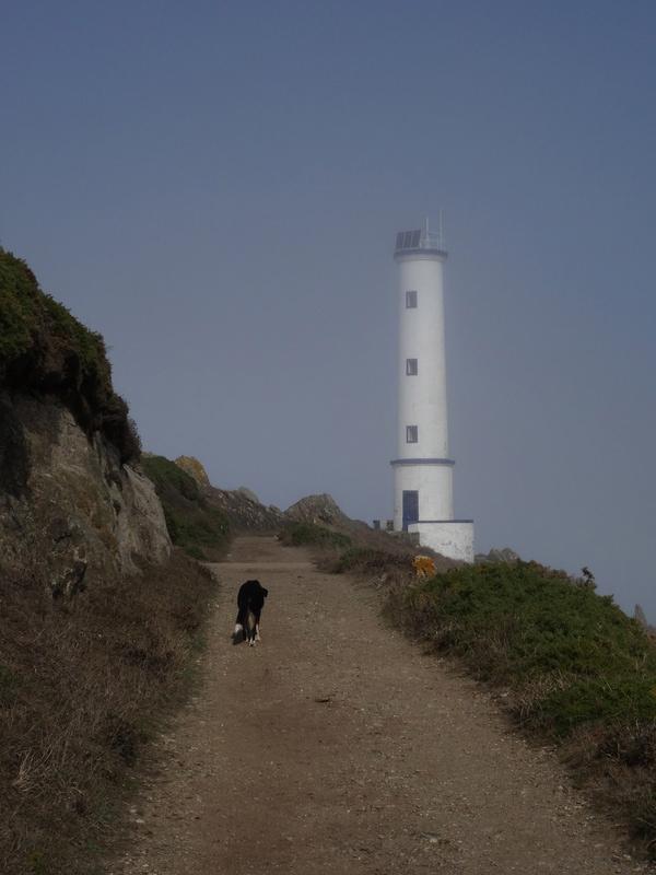 Cabo de Home et praia de Melides Dsc03210