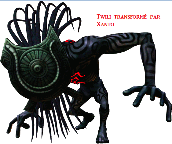 Le culte des masques Twili_11