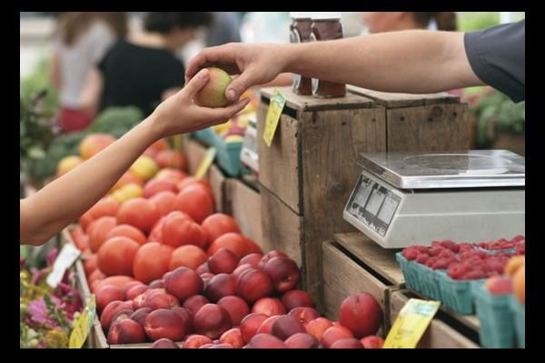 Bio : face aux marges folles des supermarchés, l'achat direct aux producteurs se développe Ac64